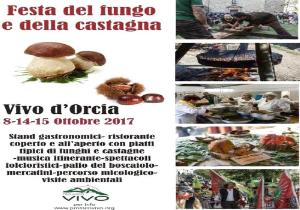 FESTA DEL FUNGO E DELLA CASTAGNA Vivo d'Orcia (SI)