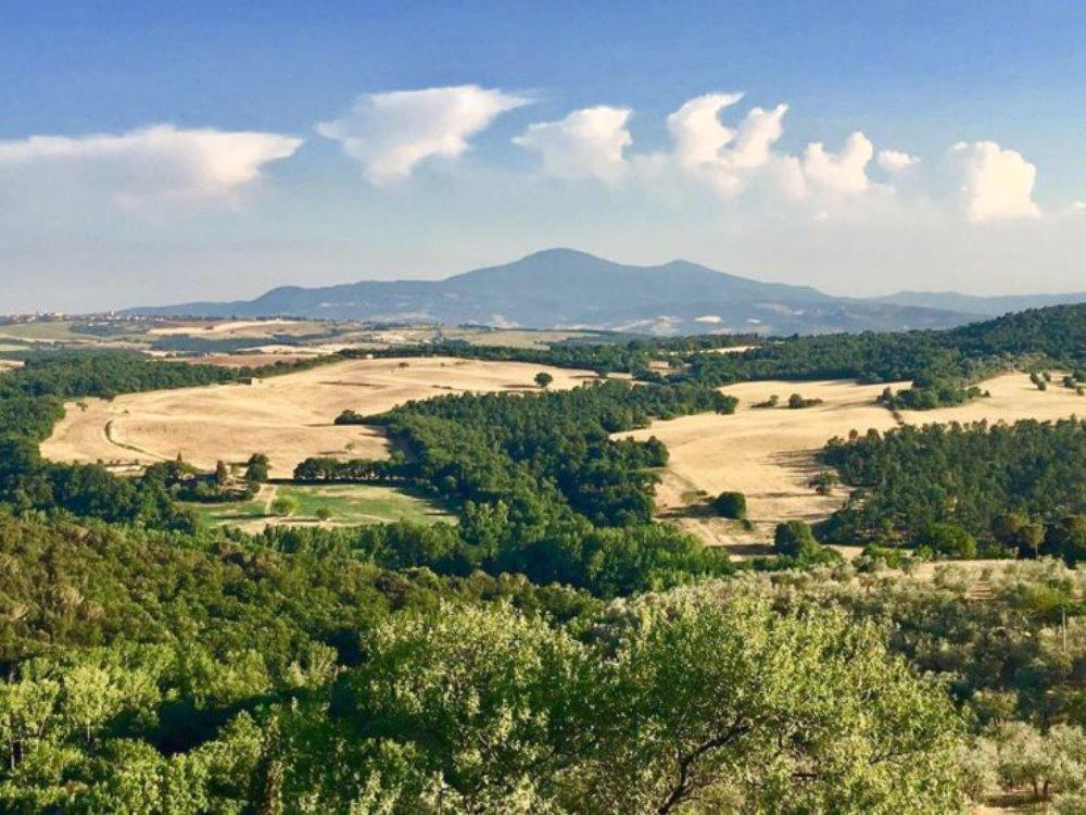 Festa dell'OLIO NOVO a Castelmuzio Il 12, 13 e 14 ottobre 2018, Castelmuzio capitale dell'olio extra vergine d'oliva